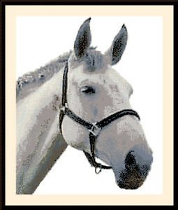 Horse-Head-Cross-Stitch-Kit
