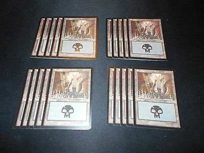 Mercadian Masques MTG NM 1x Complete 20 Card Basic Land Set
