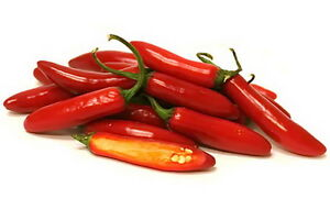 Red Hot Chili Pepper Jalapeno Seeds 50 PCS