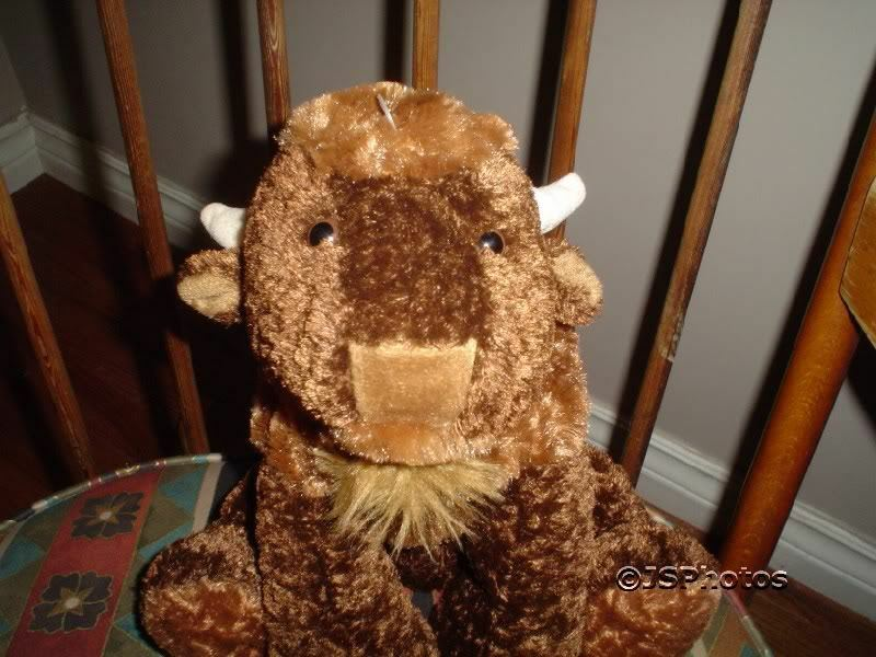 Mary Meyer Flip Flops Bison Buffalo Retirosso