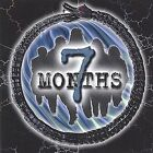 7 Months by 7 Months (CD, Sep-2001, Active Mind Productions)