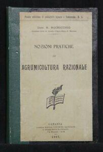 NOZIONI PRATICHE DI AGRUMICOLTURA  RAZIONALE. N. Bochicchio. C. Battiato.