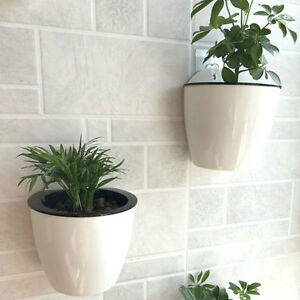 1pc white plastic plant flower pot wall hanging planter house garden image is loading 1pc white plastic plant flower pot wall hanging mightylinksfo