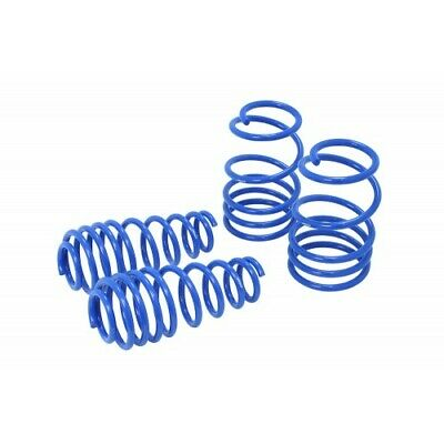 Manzo Performance Sport Lowering Springs 2005-2014 Ford Mustang 5.0L 5.8L 3.7L