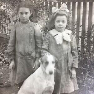 Antique Cabinet Card Photo Big Dog Little Girls 1890s Victorian Fashion Franklin