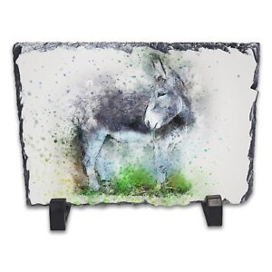 Donkey-Watercolour-Abstract-Art-Rock-Slate-Photo-Frame-Rectangle