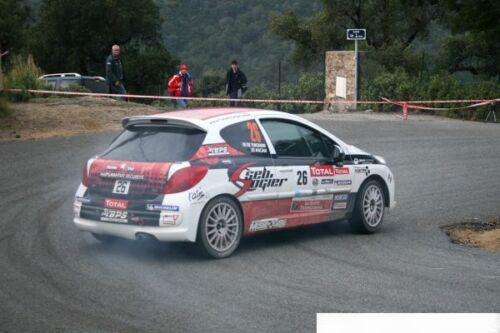 ANCIAN DECALS 1//43 PEUGEOT 207 RC R3T AM010 #26 RALLYE DU VAR 2012