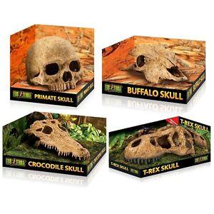 Exo Terra Crocodile Buffalo Primate Trex Skull Reptile Vivarium