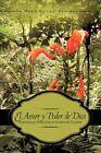 El Amor y Poder de Dios: Experiencias Misioneras En La Selva del Ecuador by Maria Luisa J Edwards (Paperback / softback, 2010)
