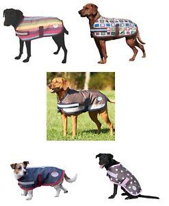 Winter Outdoor Dog Coat