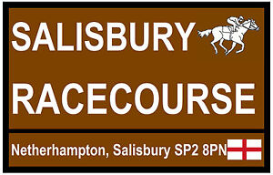 HORSE RACING TOURIST SIGNS (SALISBURY) - FUN SOUVENIR NOVELTY FRIDGE MAGNET NEW