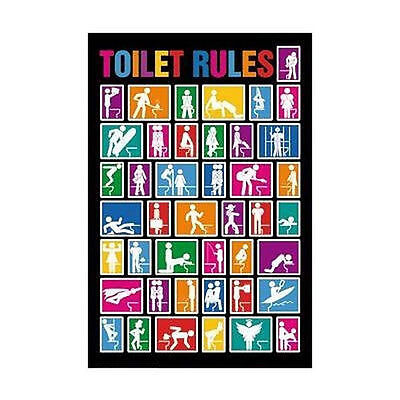 TOILET RULES FUNNY POSTER 24x36 COLLEGE DORM 1601