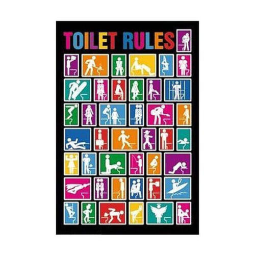 COLLEGE DORM 1601 TOILET RULES FUNNY POSTER 24x36