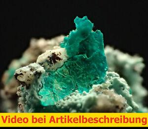 7761-Chalkophyllit-chalcophyllite-ca-1-5-1-5-2-cm-Gengma-China-2014-Movie