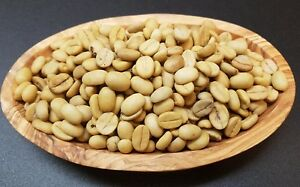 Café graines, Coffea Arabica, Café arbuste, frais de Guatemala des Highlands  </span>