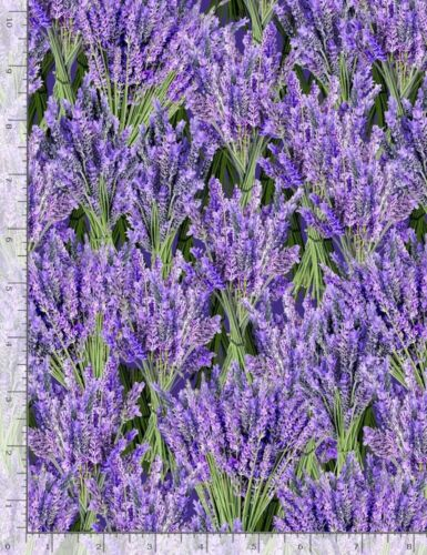 Packed Purple Lavender Flower Timeless Treasures YARD Floral Fabric