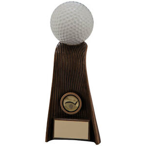 205mm-Golf-Trophy-RRP-14-50-inc-free-postage-engraving