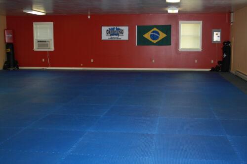 blue mixed martial art grappling interlocking floor mats mma wrestling boxing