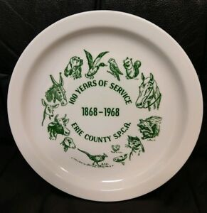 Details about Vntg Buffalo China SPCA 100 Years of Service Plate, 1968,  Erie County NY, Nice!