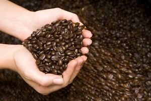 Rounding Up on the Milk Based Coffee Debate