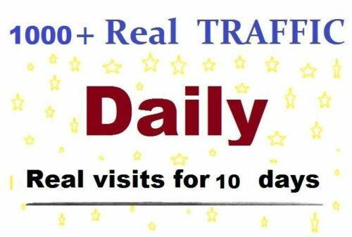1000 Real Human Visitors Per Day Your Website Traffic 10 Days 70/% USA Traffic