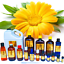 3ml-Essential-Oils-Many-Different-Oils-To-Choose-From-Buy-3-Get-1-Free thumbnail 16