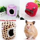 Rat Hamster Parrot Ferret Rabbit Squirrel Hammock Safe Hanging Bed House Pet Toy