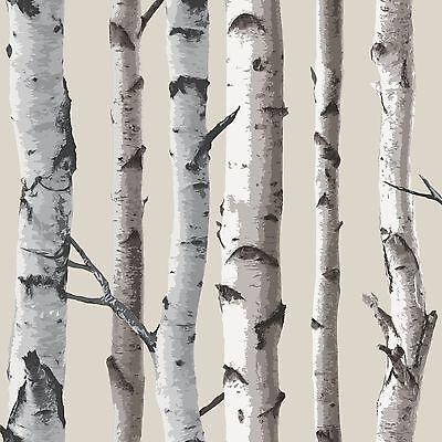 FINE DECOR BIRCH TREES 10m WALLPAPER - WHITE & SILVER NEW ROOM DECOR