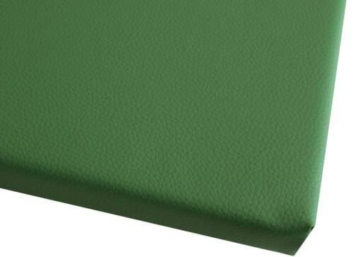 CUSCINI di alta qualità Sedia Cuscino Cuscino Panca Sedia Edizione Cuscino 40x40 cm VERDE