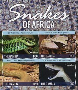 Gambie-2015-neuf-sans-charniere-serpents-de-l-039-Afrique-4V-m-s-ii-reptiles-BOOMSLANG-Viper-Cobra
