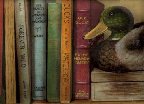 BOOKS DUCK DECOY  WALLPAPER BORDER  CL41162 FISHING LURES