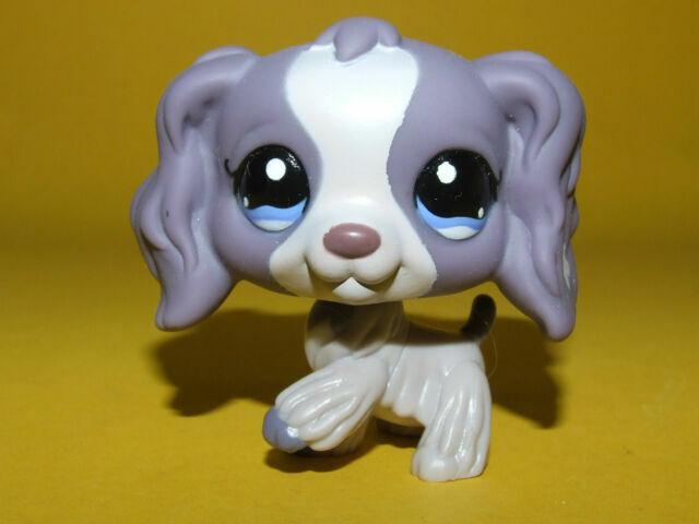 1209 Rare Littlest Pet Shop Purple Cocker Spaniel Dog Puppy Blue Eyes Lps Toy For Sale Online Ebay