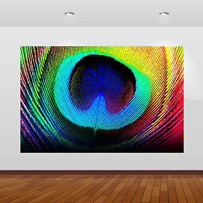 Beautiful Peacock Feather Pattern Wall View Sticker Poster Art Mural Decal 1093