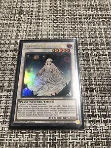 Yu-Gi-Oh Garden Rose Maiden 1st Ed LED4-EN023 NM Ultra Rare- Near Mint