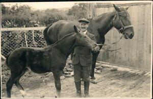 Ansichtskarte-Pferde-auf-Bauernhof-Privatfotokarte-1928