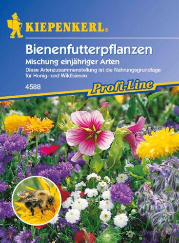 violettes Kiepenkerl Semences abeilles plantes fourragères Mélange