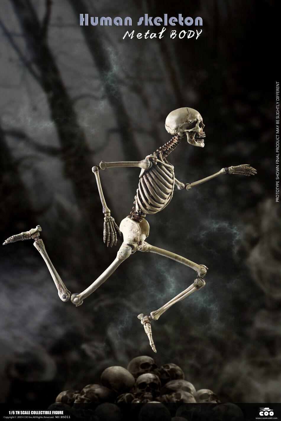 COOmodellolo 16 Huuomo Skeleton & Skull Metal Movable corpo tuttioy 12'' cifra modellolo