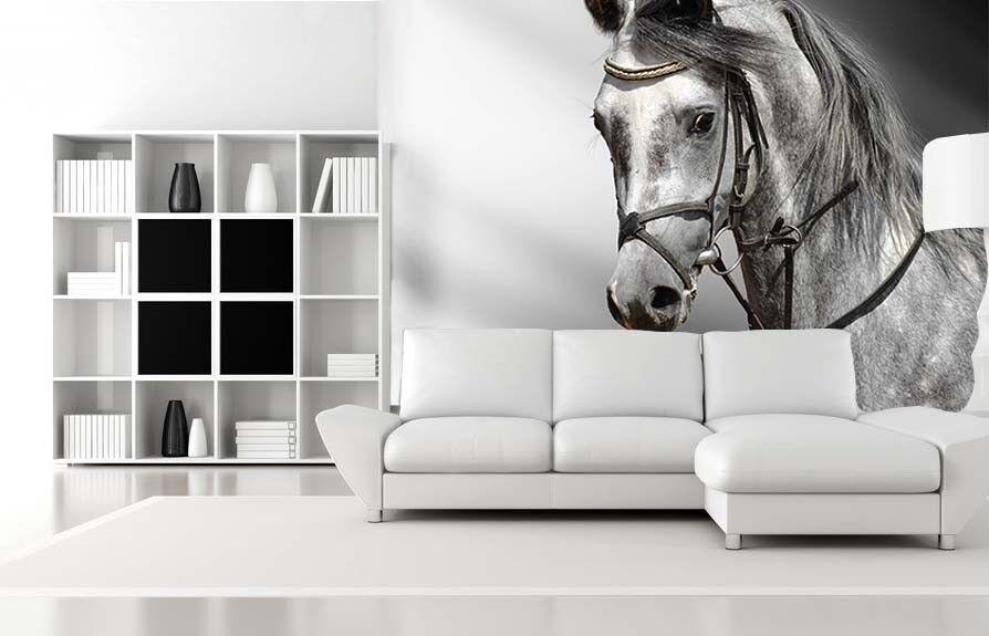 3D Gut Aussehendes Pferd 74 Tapete Wandgemälde Tapete Tapeten Bild Familie DE | Verrückte Preis  | Reparieren  | Erste Gruppe von Kunden