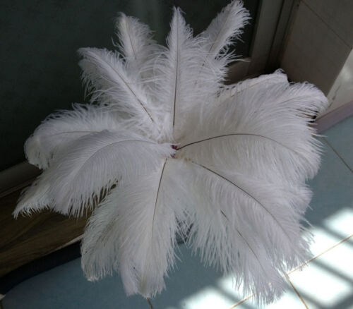100pcs//200pcs//500pcs//1000pcs white ostrich feathers decor wedding!6-8inches