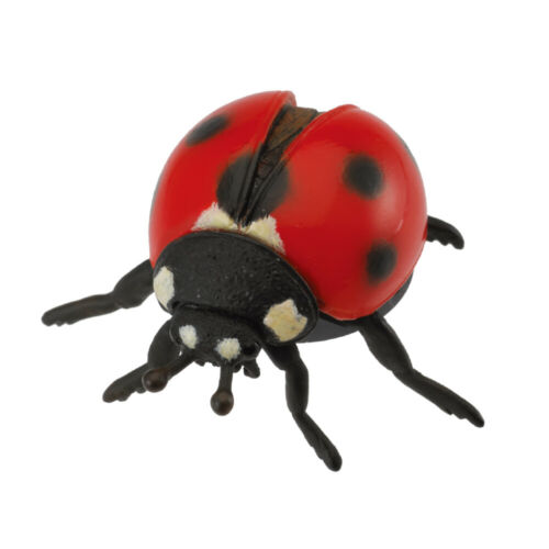 CollectA Coccinelle