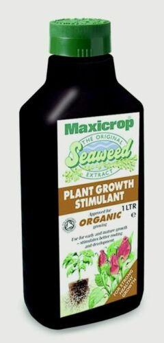 Maxicrop Original algues extrait 1 L-popgs 61 L