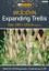 Expanding-Natural-Wooden-Trellis-Climbing-Plants-Fence-Panel-Screening-Lattice thumbnail 9