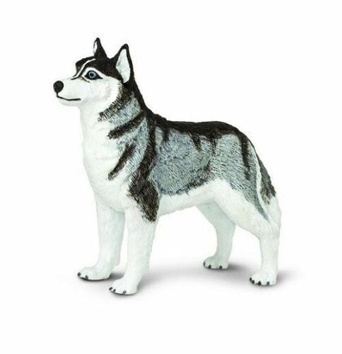 """Siberian Husky Best In Show Dogs #255229 Safari Ltd 3.25/""""L x 2.75/""""H NIB"""