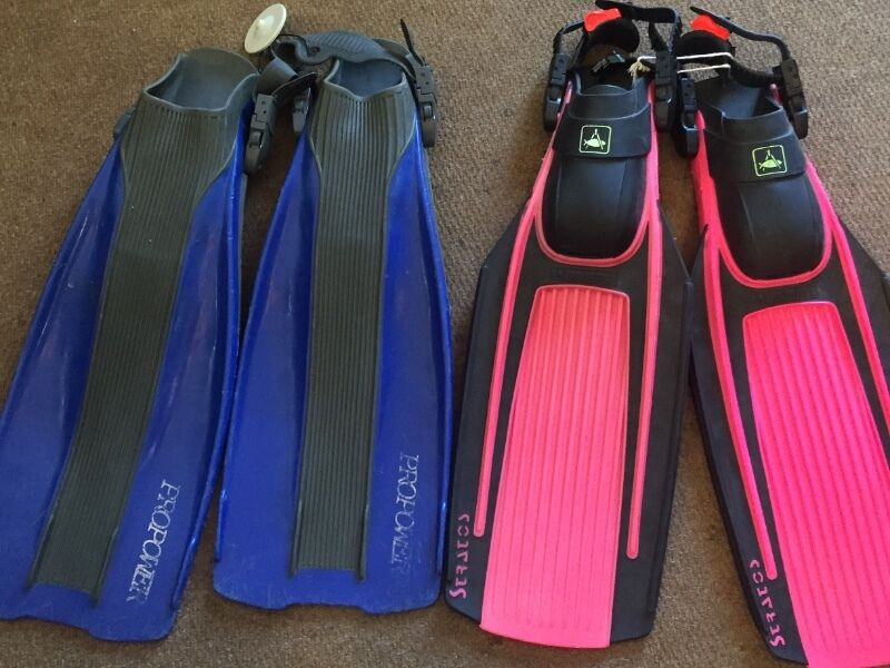 Dive flippers