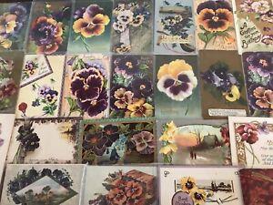 Nice-LOT-of-25-Pansies-PANSY-Flowers-Floral-Greetings-Postcards-In-Sleeves-s985