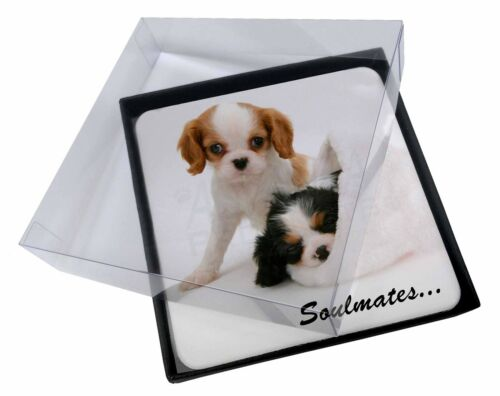 4x King Charles Spaniel Dogs 'Soulmates' Picture Table Coasters Set in, SOUL57C