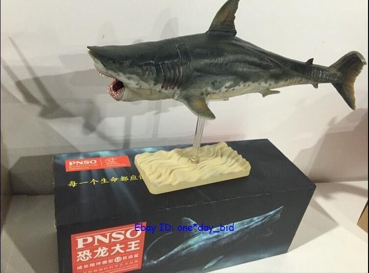 Rare Rare Rare Megalodon prehistoric sharks Dinosaurs Model