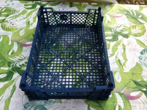 1 Ablagekorb für Garten und Haushalt