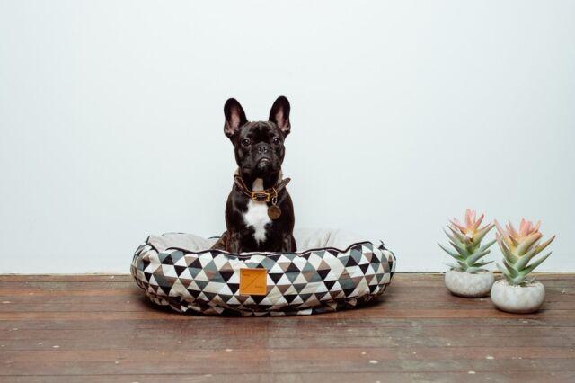 Mog & Bone Circular Bed Mocca Diamond