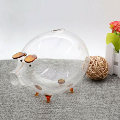 Clear Glass Cute Chubby Pig Piggy Bank Saving Money Coin Box Desk Decor Gift